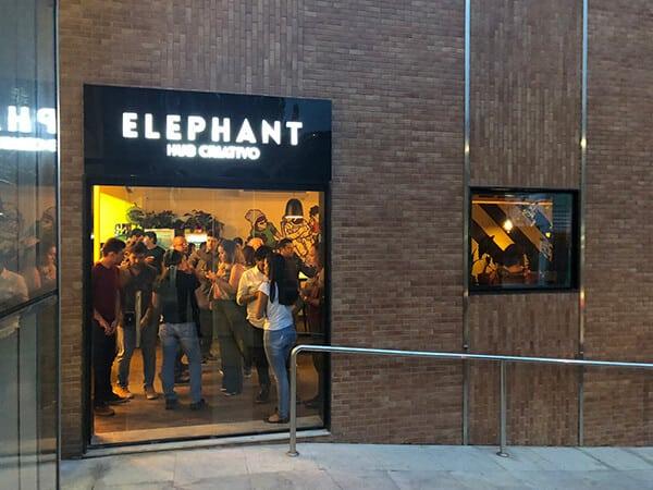 elephant-marchel